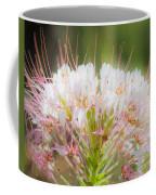 08.03.14 Palo Duro Canyon - Comanche Trail 121e Coffee Mug