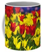 090416p028 Coffee Mug