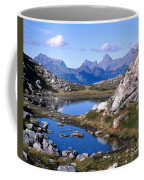 Artist Ridge Tarns Coffee Mug