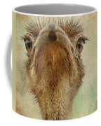 Ostrich Closeup Coffee Mug