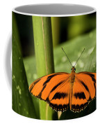 A Banded Orange Heliconian Butterfly Coffee Mug