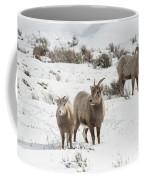 A Family Affair Coffee Mug