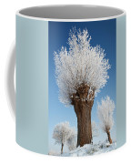 A Frosted Willow On A Very Cold And Bright Winter Day Coffee Mug