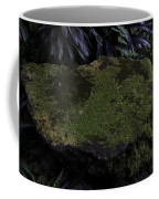 A Moss Covered Stone Inside The National Orchid Garden In Singapore Coffee Mug