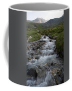 A Mountain Stream In Vanoise National Coffee Mug