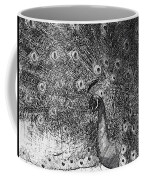 A Peacock's Feathers Coffee Mug