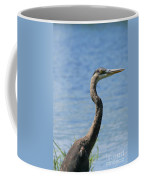 A Portrait Of A Great Blue Heron  Coffee Mug
