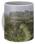 A Small Path Through Very Tall Grass Inside The Okhla Bird Sanctuary Coffee Mug