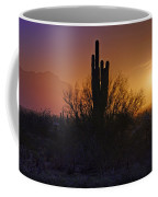A Sonoran Morning  Coffee Mug