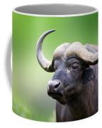 African Buffalo Portrait Coffee Mug