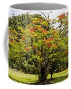 African Tulip Tree Coffee Mug