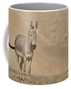 African Wild Ass Equus Africanus Coffee Mug