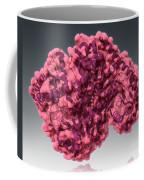 Alanine Transaminase, Molecular Model Coffee Mug