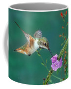 Allens Hummingbird Coffee Mug