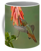 Allens Hummingbird Feeding Coffee Mug