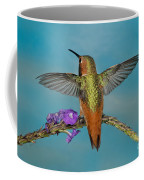 Allens Hummingbird Male Coffee Mug
