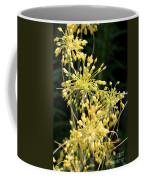 Allium Flavum Or Fireworks Allium Coffee Mug