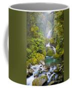 Amazing Waterfall Coffee Mug