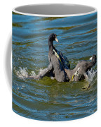 American Coots Fighting Coffee Mug