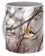 American Goldfinch In Winter Coffee Mug