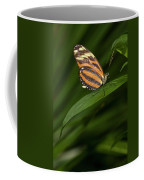 An Isabella Butterfly Eueides Isabella Coffee Mug