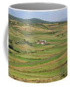 Apollonia, Or Apoloni, Fier Region Coffee Mug