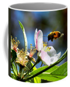 Apple Blossom And Honey Bee Coffee Mug