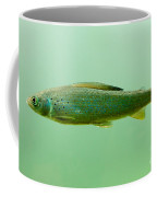 Arctic Grayling - Thymallus Arcticus - Underwater Coffee Mug