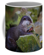 Asian Small Clawed Otter Coffee Mug