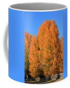 Dm5532-aspens In Fall Coffee Mug