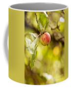 Autumn Apple Coffee Mug
