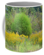 Autumn Grasslands 2013 Coffee Mug
