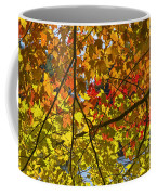 Autumn Maple Leaves Coffee Mug