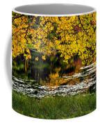 Autumn Pond 2013 Coffee Mug