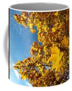 Autumn Splendor 9 Coffee Mug