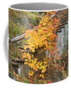 Autumn Steps Near Smalls Falls In Maine Coffee Mug
