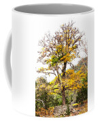 Autumn Tree Coffee Mug