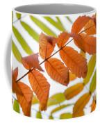Autumn Upshot Coffee Mug