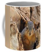 Baby Fox Squirrel Coffee Mug