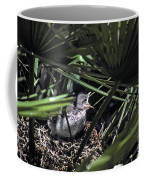 Baby Mockingbird Coffee Mug