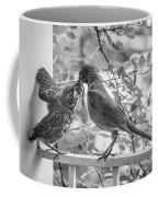 Baby Robin - Yummy Coffee Mug