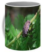 Balancing Act   Coffee Mug