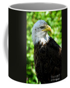 Bald Eagle - Alaska Coffee Mug