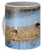 Bald Eagle Pair Coffee Mug