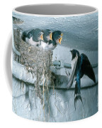 Barn Swallows Coffee Mug