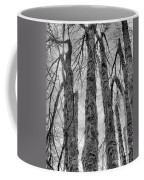 Barren Coffee Mug