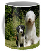 Bearded Collie And Puppy Coffee Mug