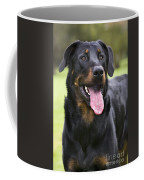 Beauceron Dog Coffee Mug
