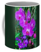 Beautiful Purple Orchid - Phalaenopsis Coffee Mug