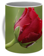 Beautiful Red Coffee Mug